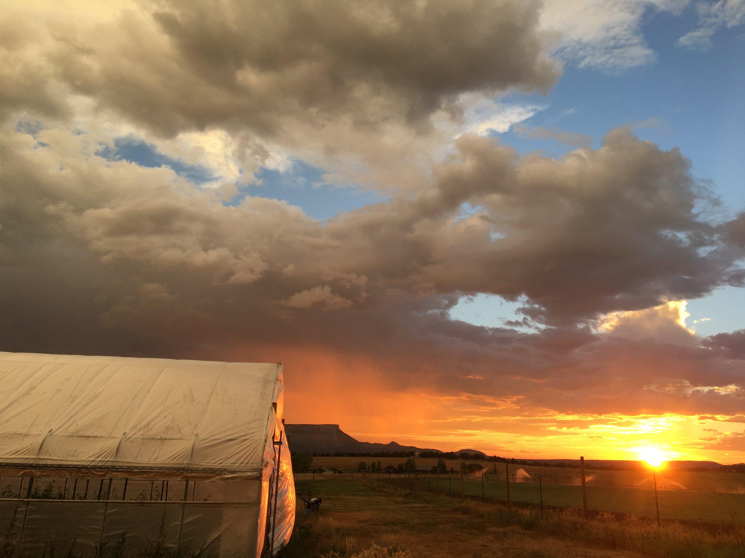 Sunset post rain storm, so incredible.