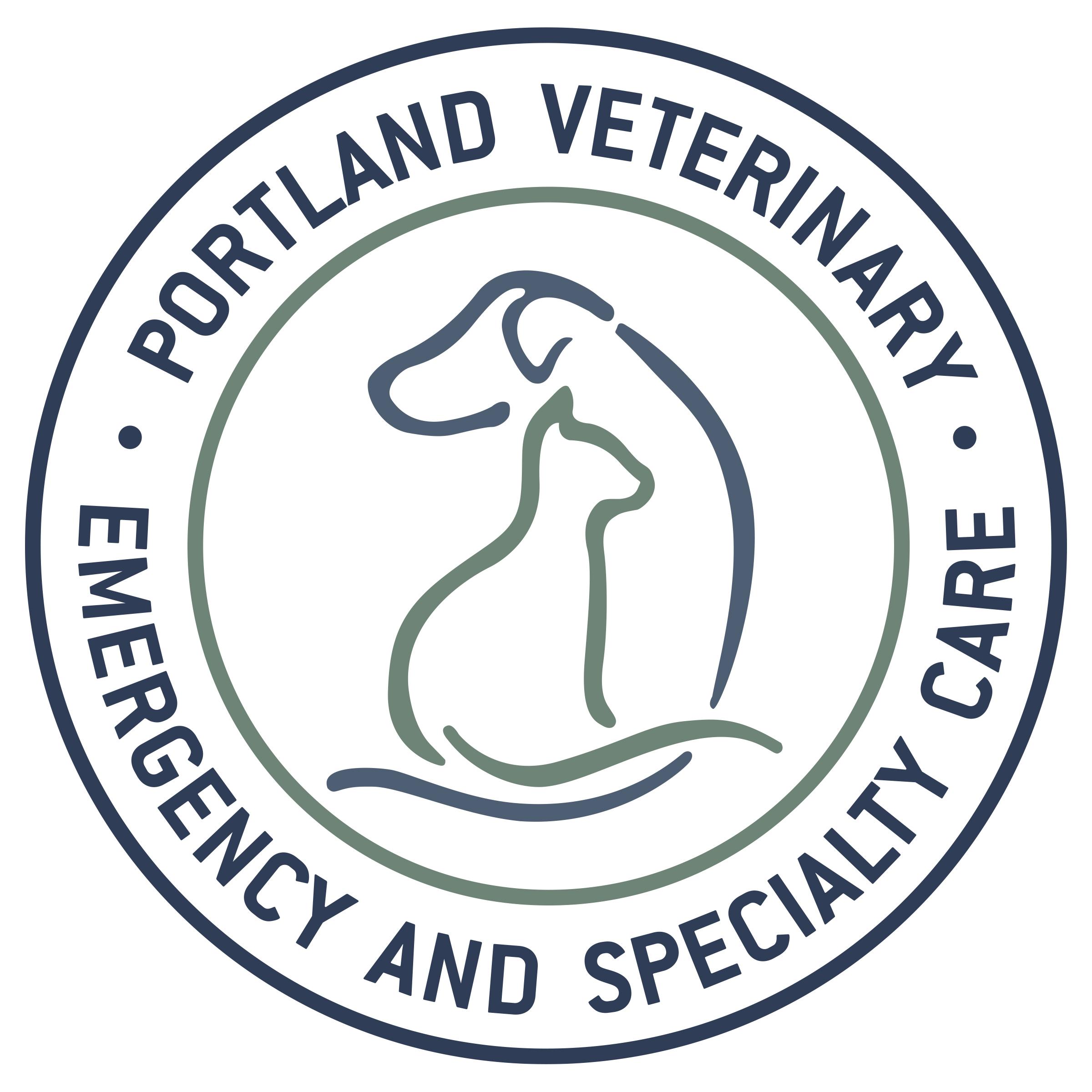 PVESC logo.jpg
