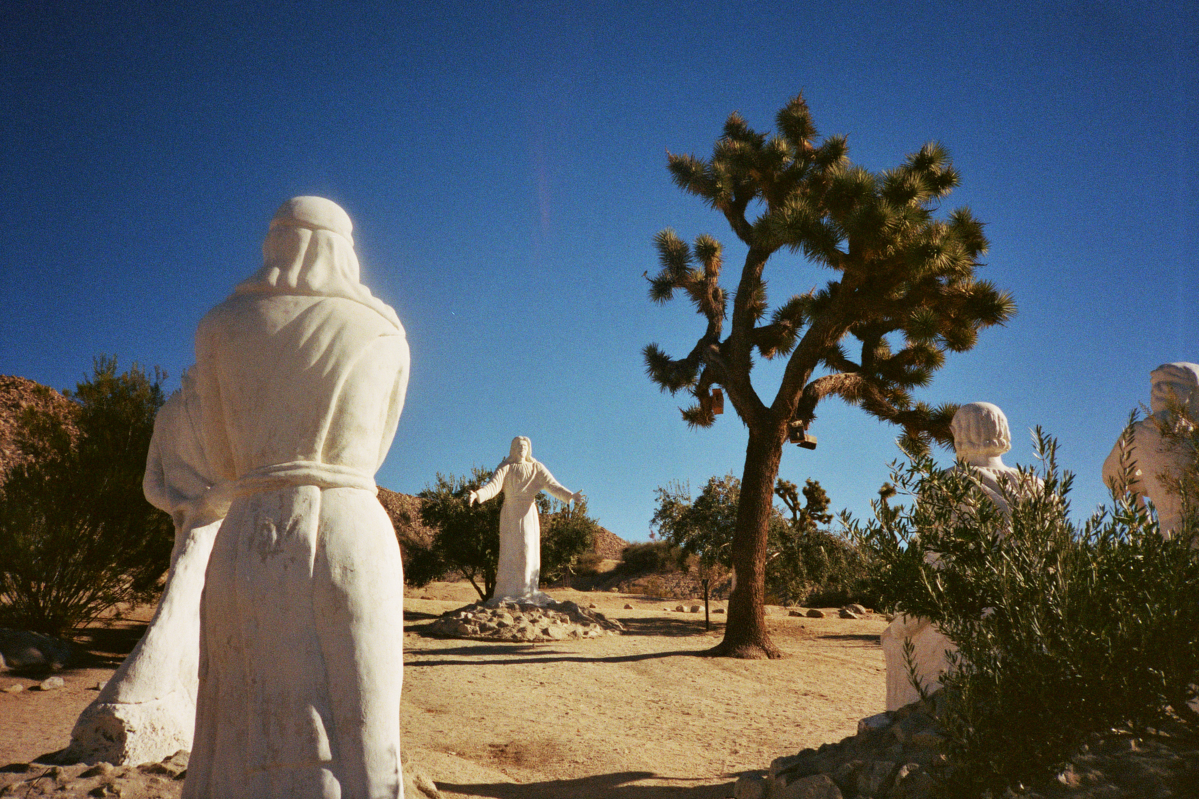 christ - joshua tree - california