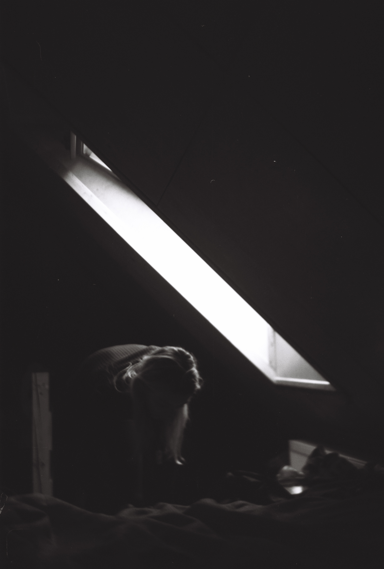 attic light - russia