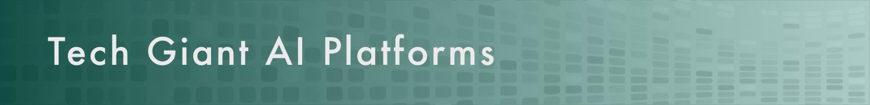 Tech giant AI Platforms.png