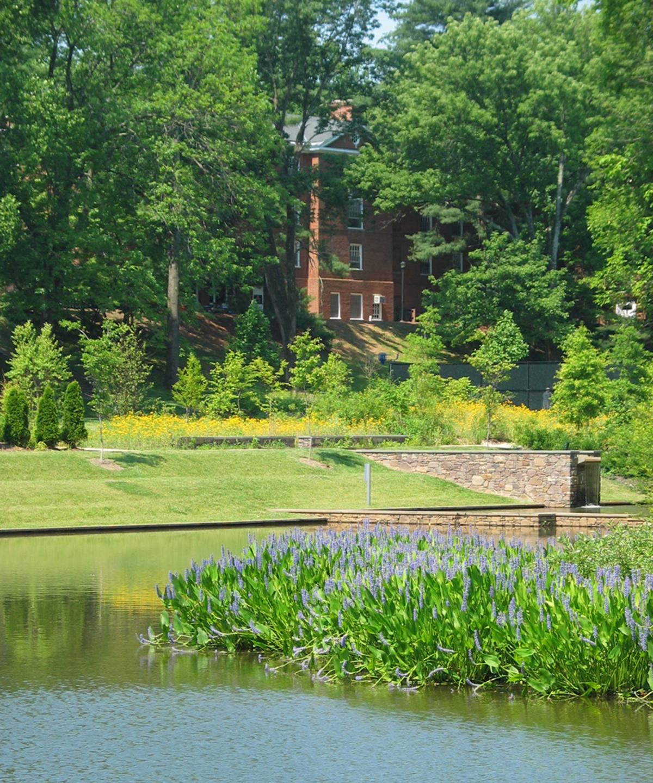 The Dell, University of Virginia