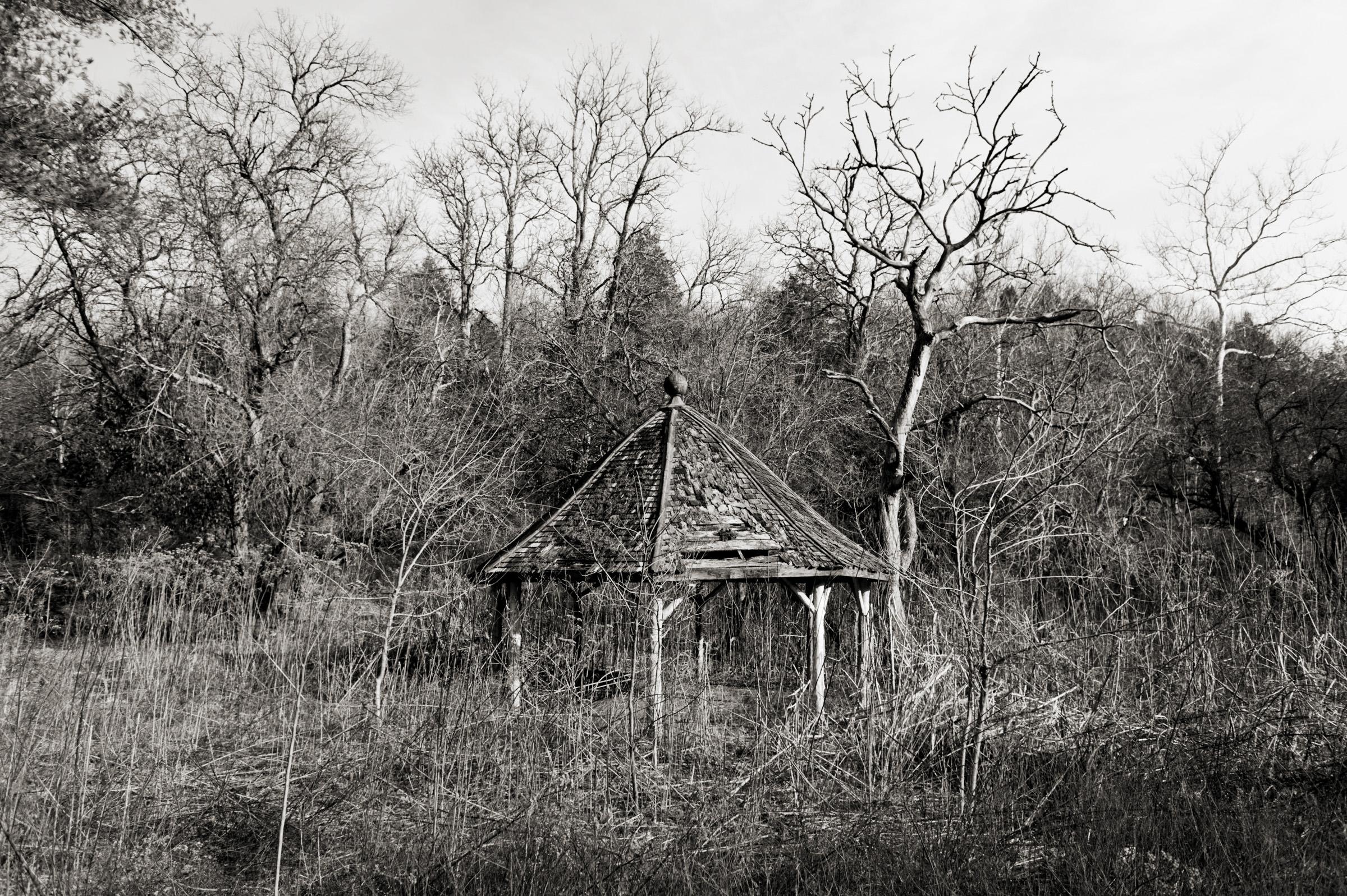 Manmade Wilderness 013.jpg