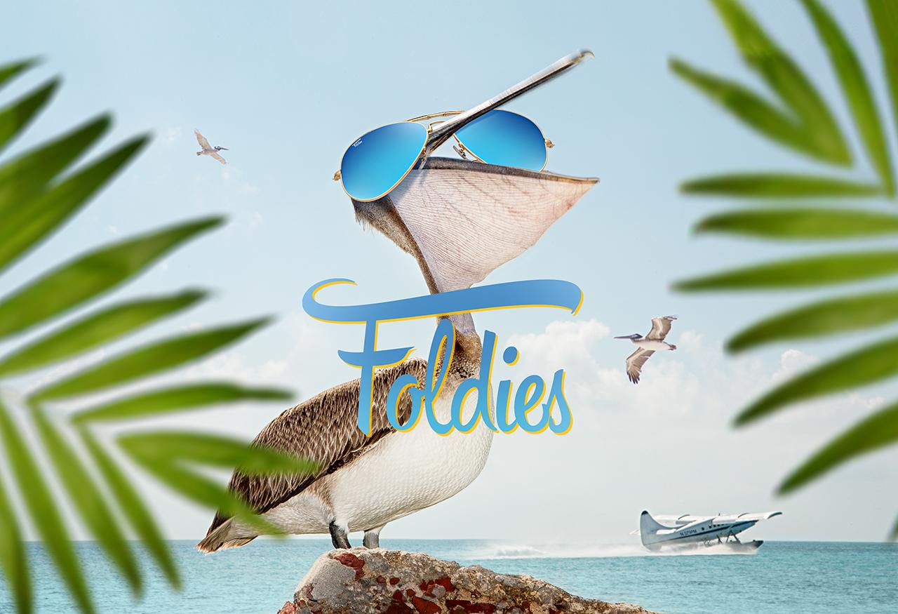 pelican scene foldies website.jpg