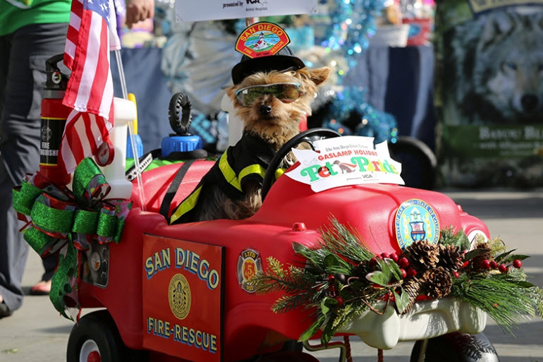 Gaslamp Pet Parade.jpg