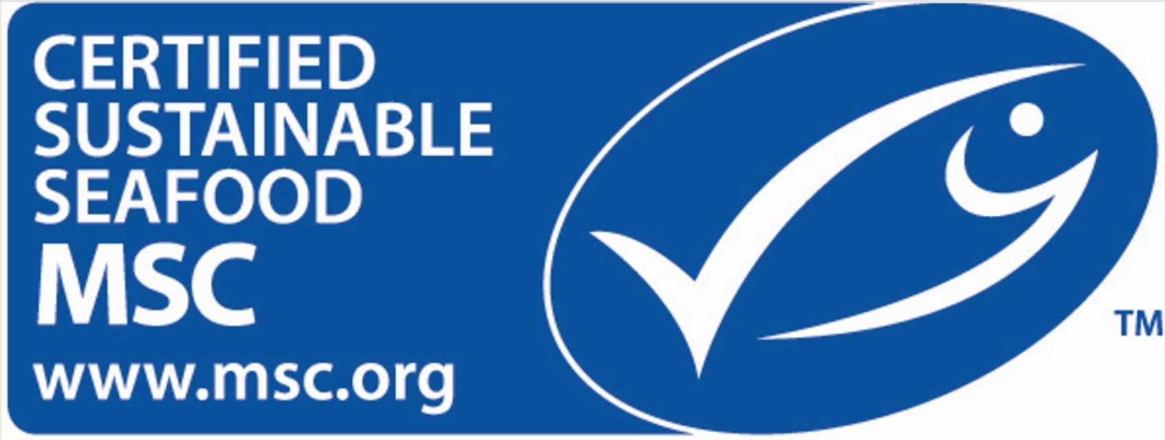 logo MSC copy.png