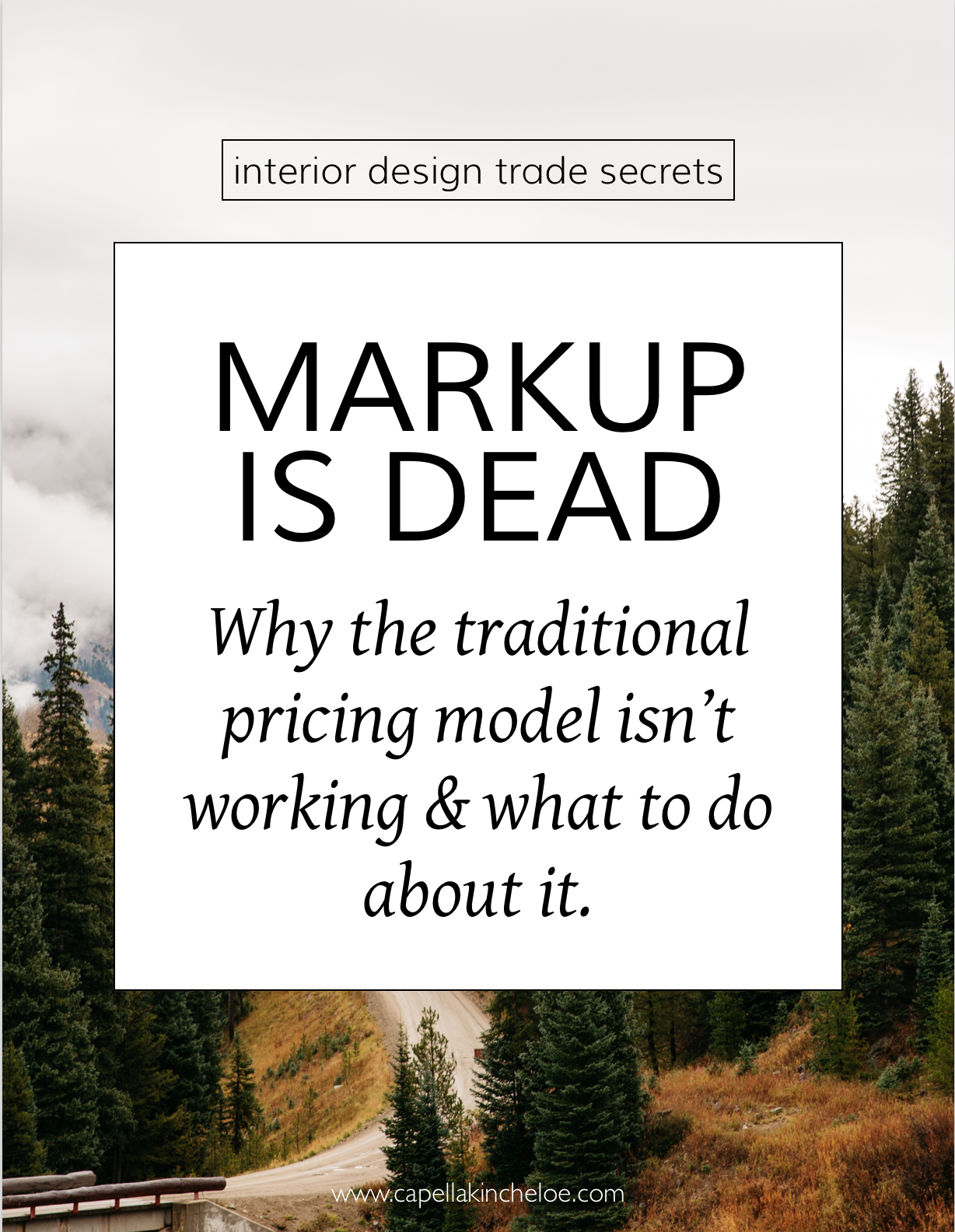 Interior Design Trade Secrets: Markup is Dead. Why the traditional pricing model isn't working and what to do about it.