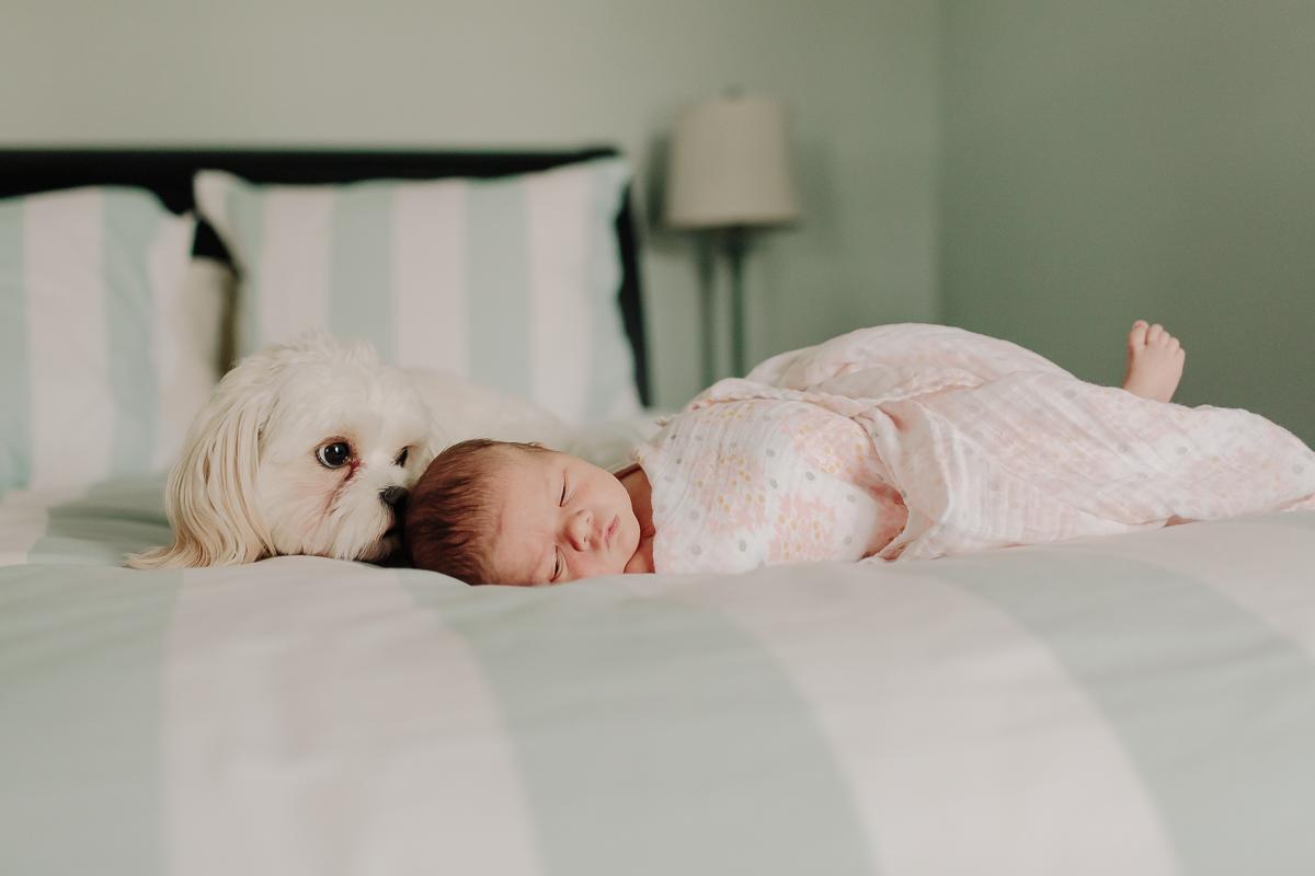 Virginia-Beach-Newborn-Photographer-16.jpg