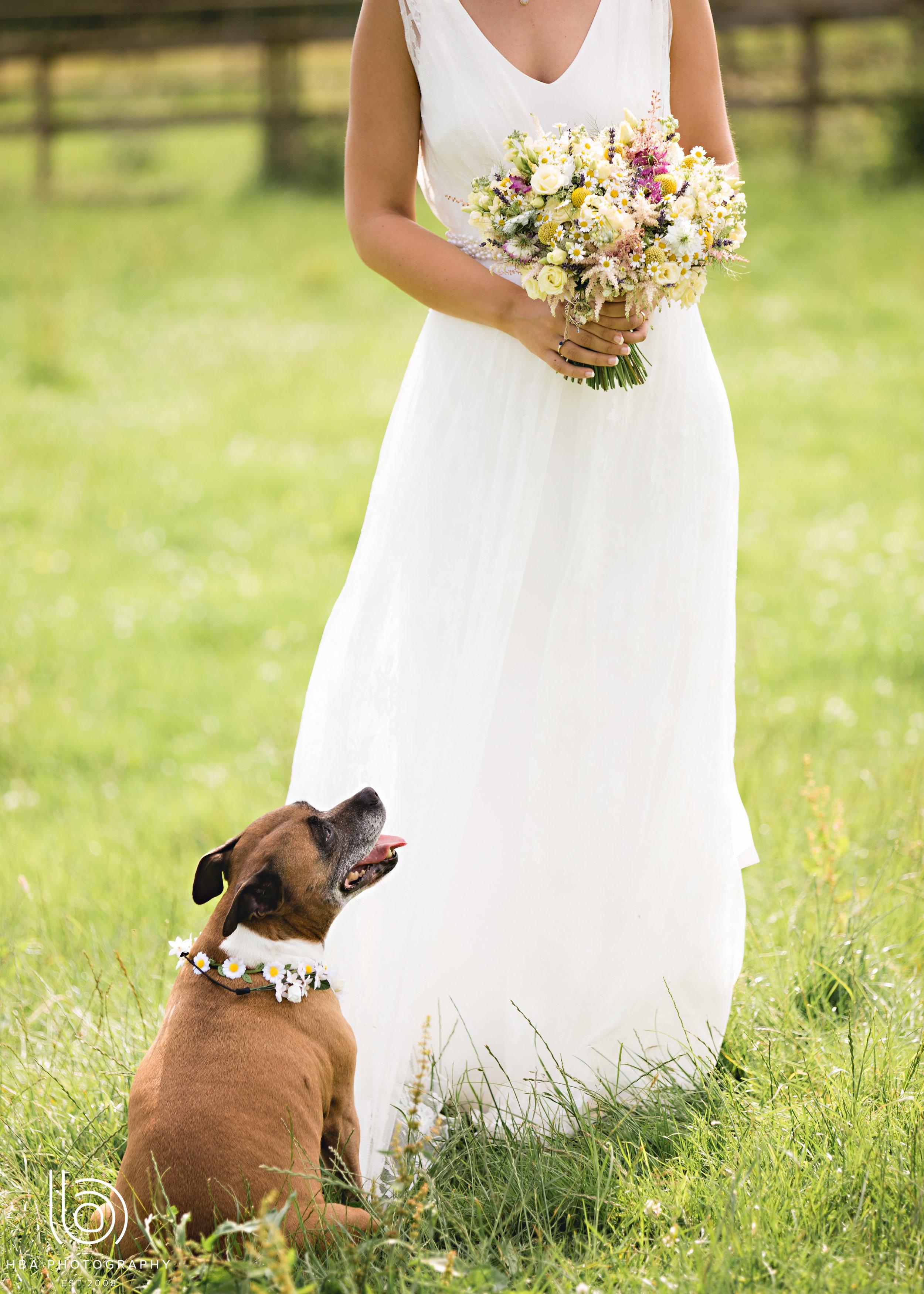 Simple and elegant rustic bridal flowers by Derbyshire Florist Tineke Floral Design in Derbyshire