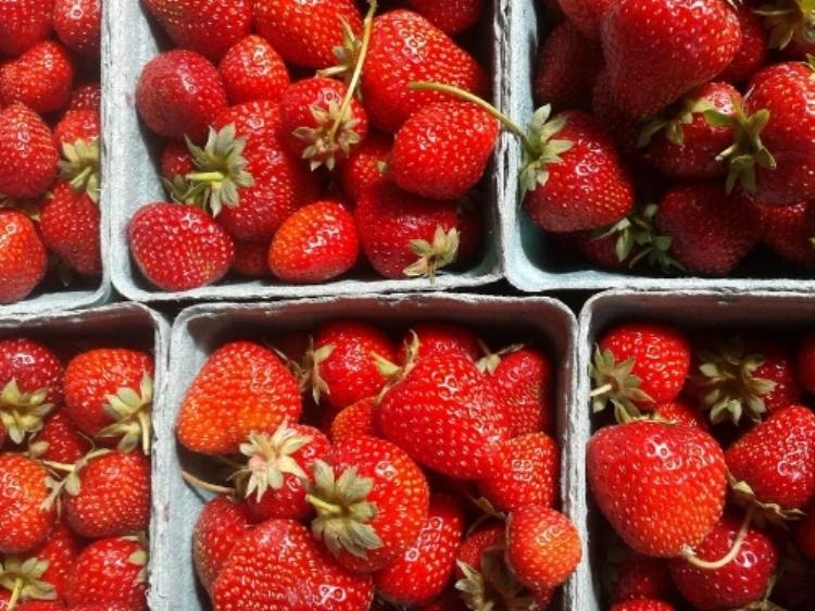 Strawberries in pints LGS.jpg
