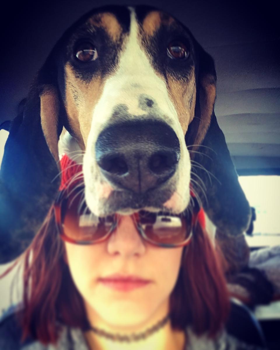 coiled dog 3.jpg