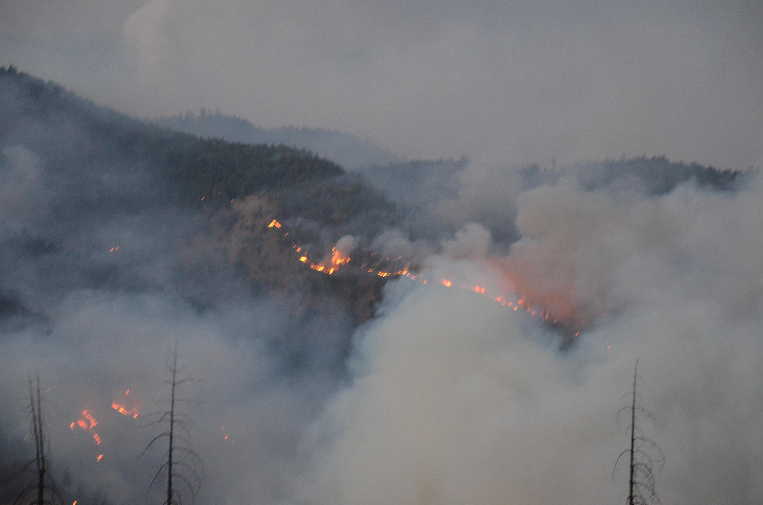 20160903 Gap Fire 339.JPG