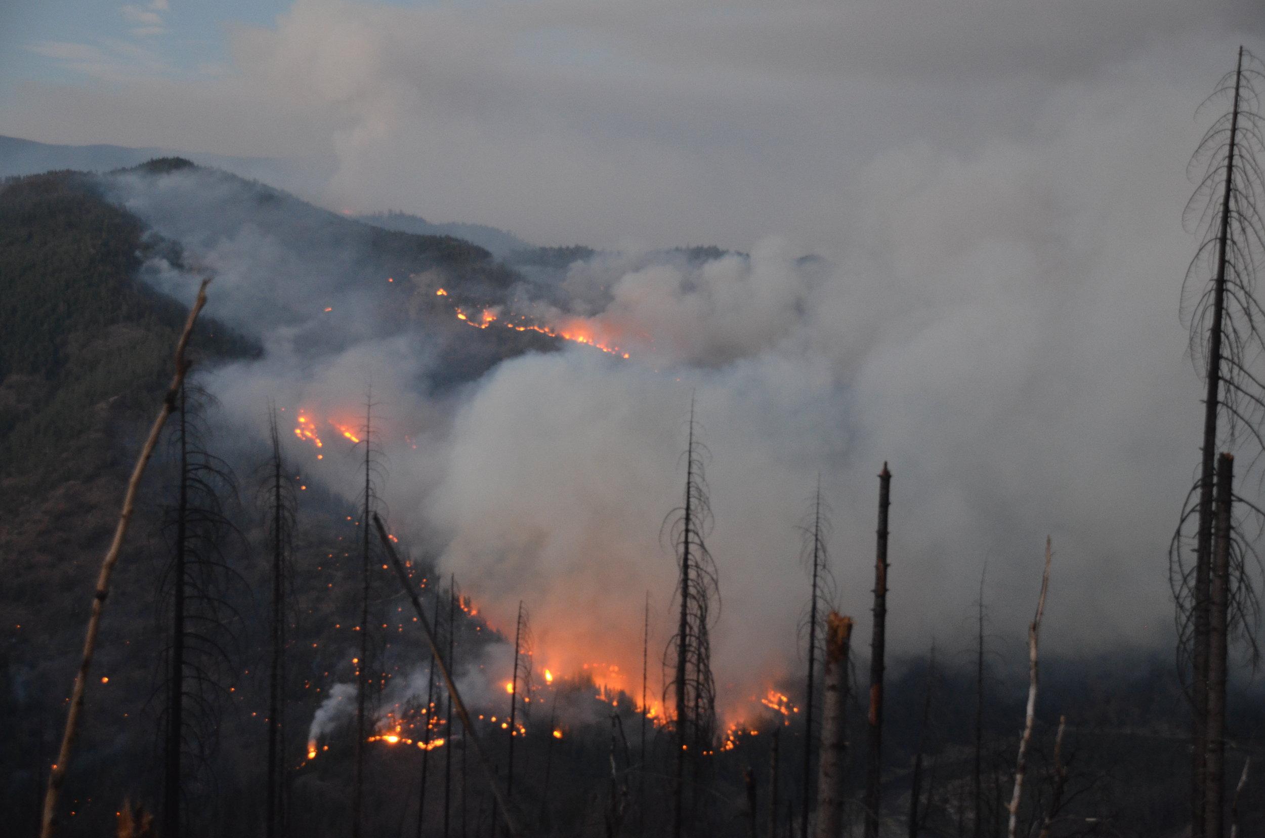 20160903 Gap Fire 343.JPG