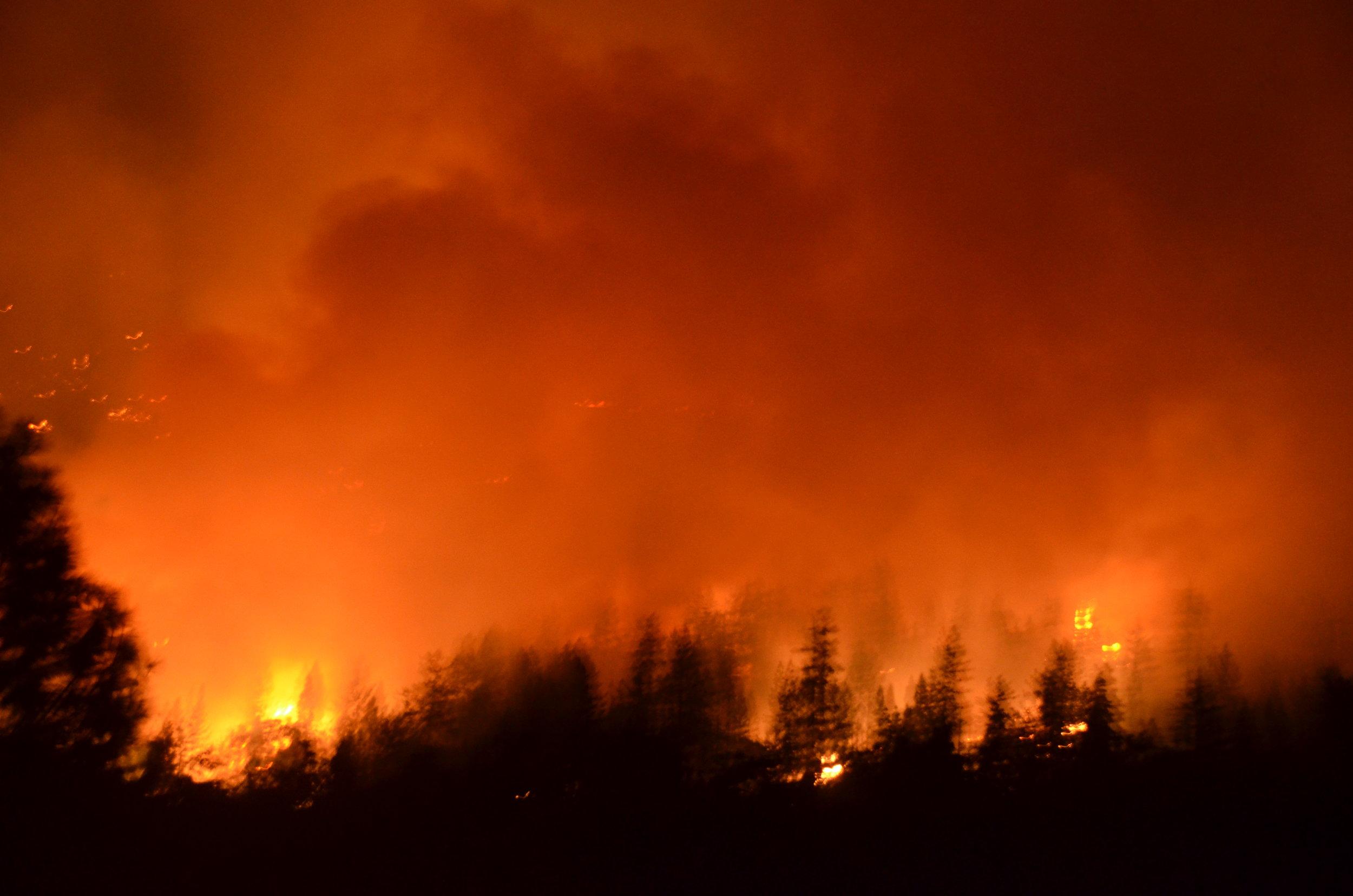 20160903 Gap Fire 361.JPG