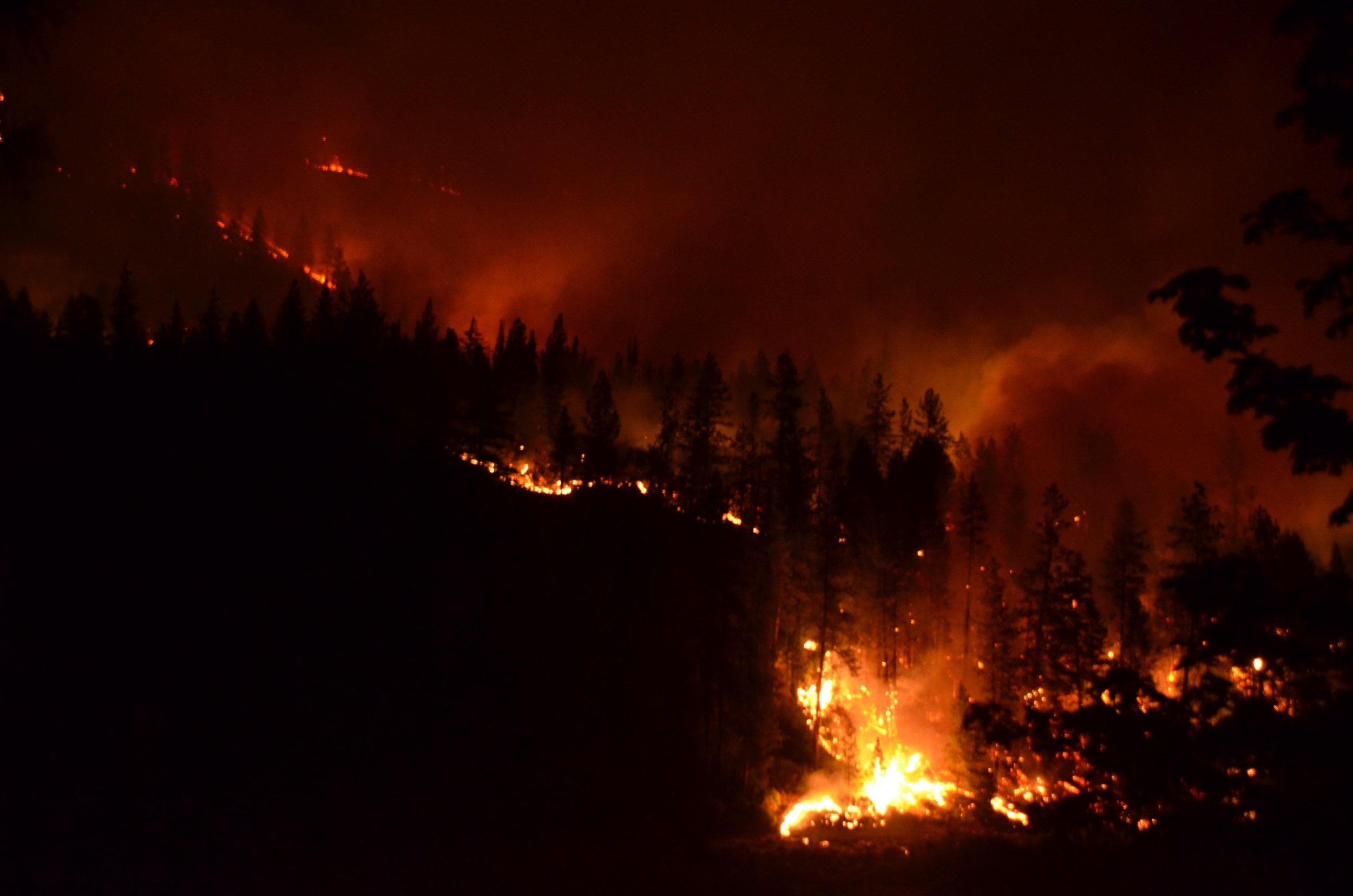 20160903 Gap Fire 369.JPG