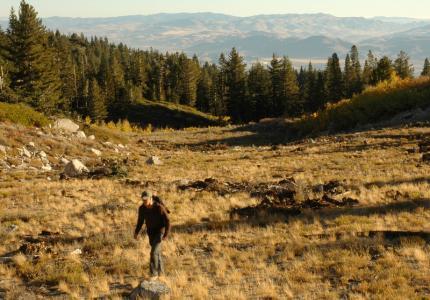 Hiking Mount Rose