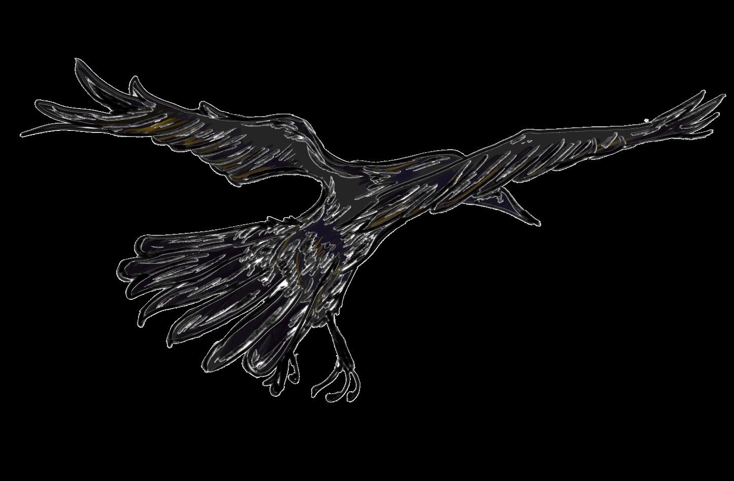 crow flight.png