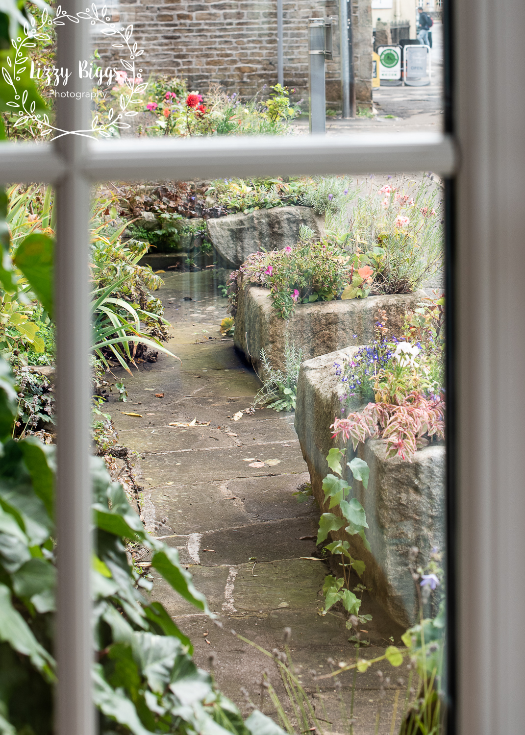Lizzy_Biggs_Photography_flower_planters_view_from_shop_window