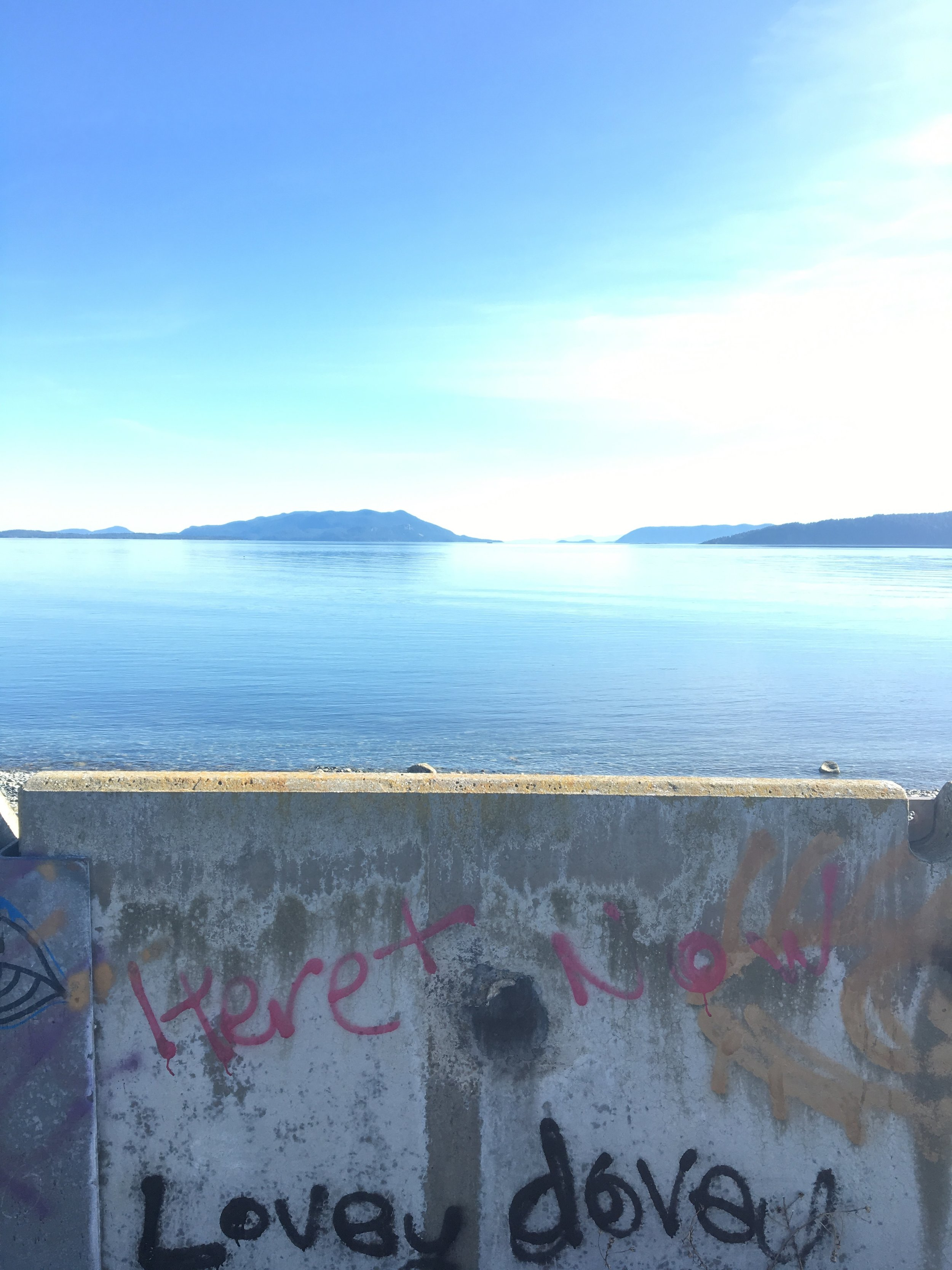 Unfiltered view from the magical Lummi Island May 2016