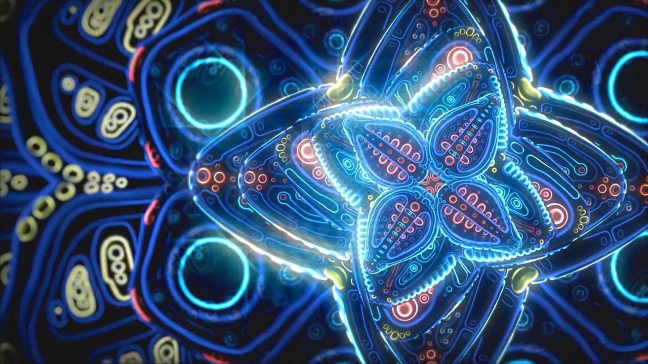 Cosmic Flower Unfolding.jpg