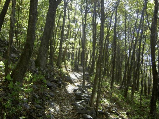 blue ridge conservancy trail