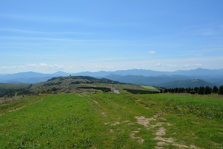 Protected Areas — Blue Ridge Conservancy