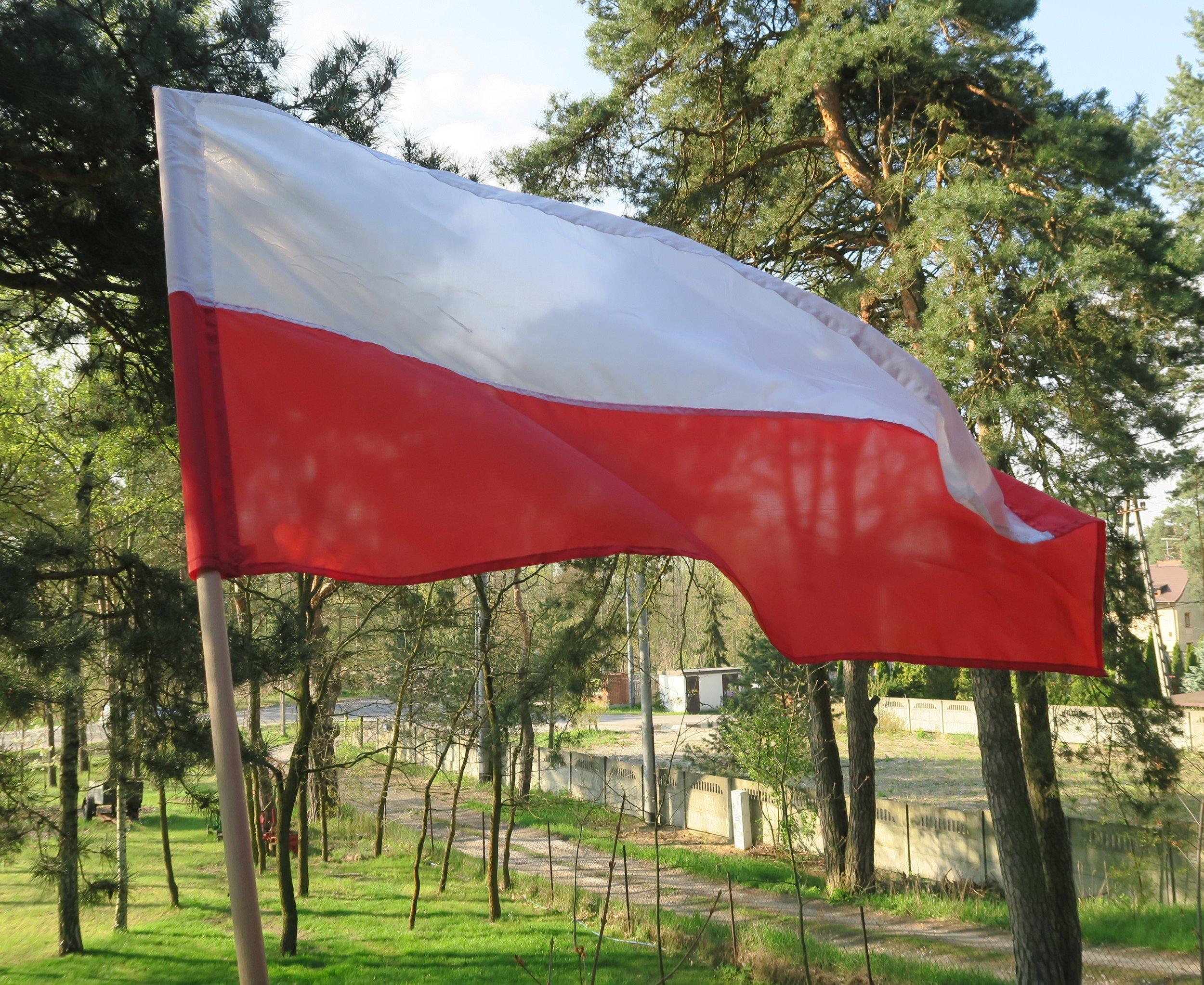 flag Polish.jpg