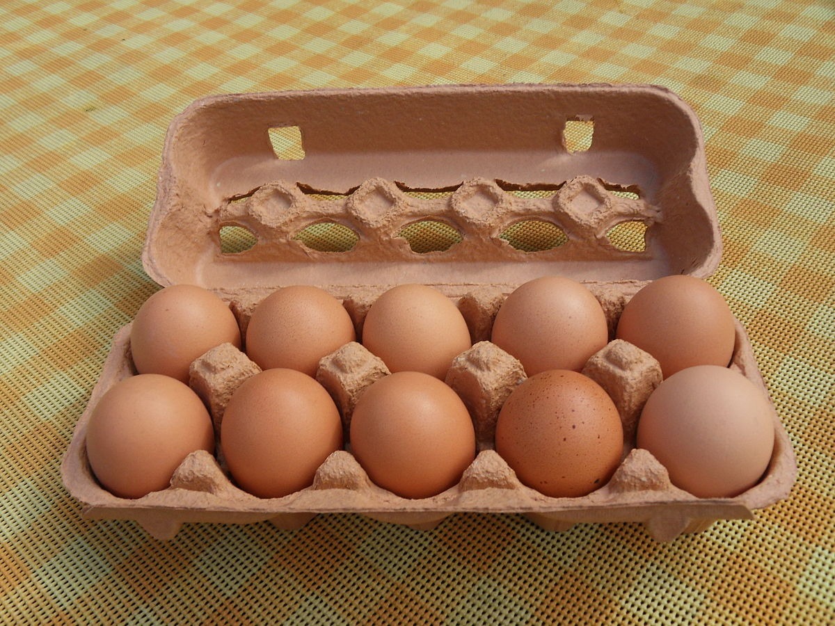 10 eggs.jpg