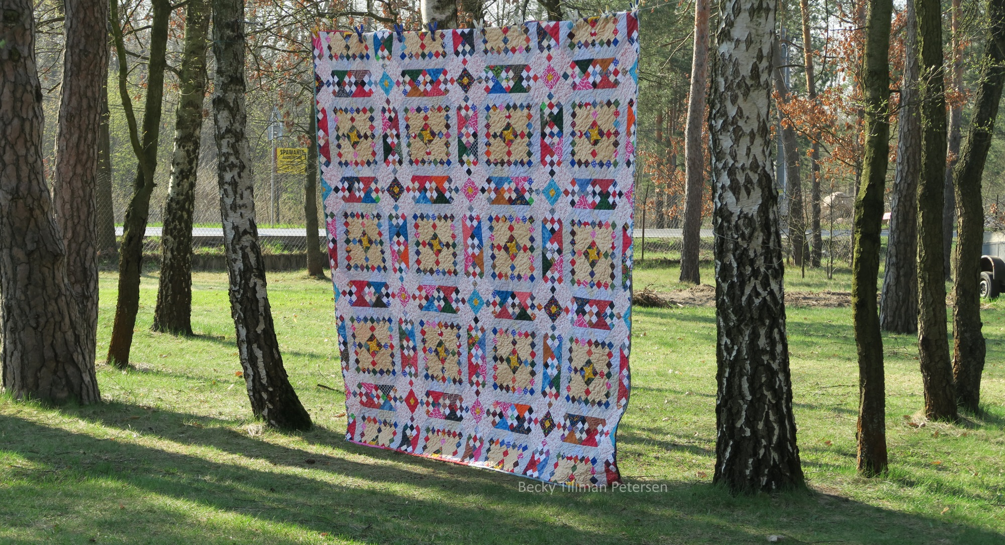 Picture of arabano roads quilt, quilt with squares and retangular patterns hung on trees