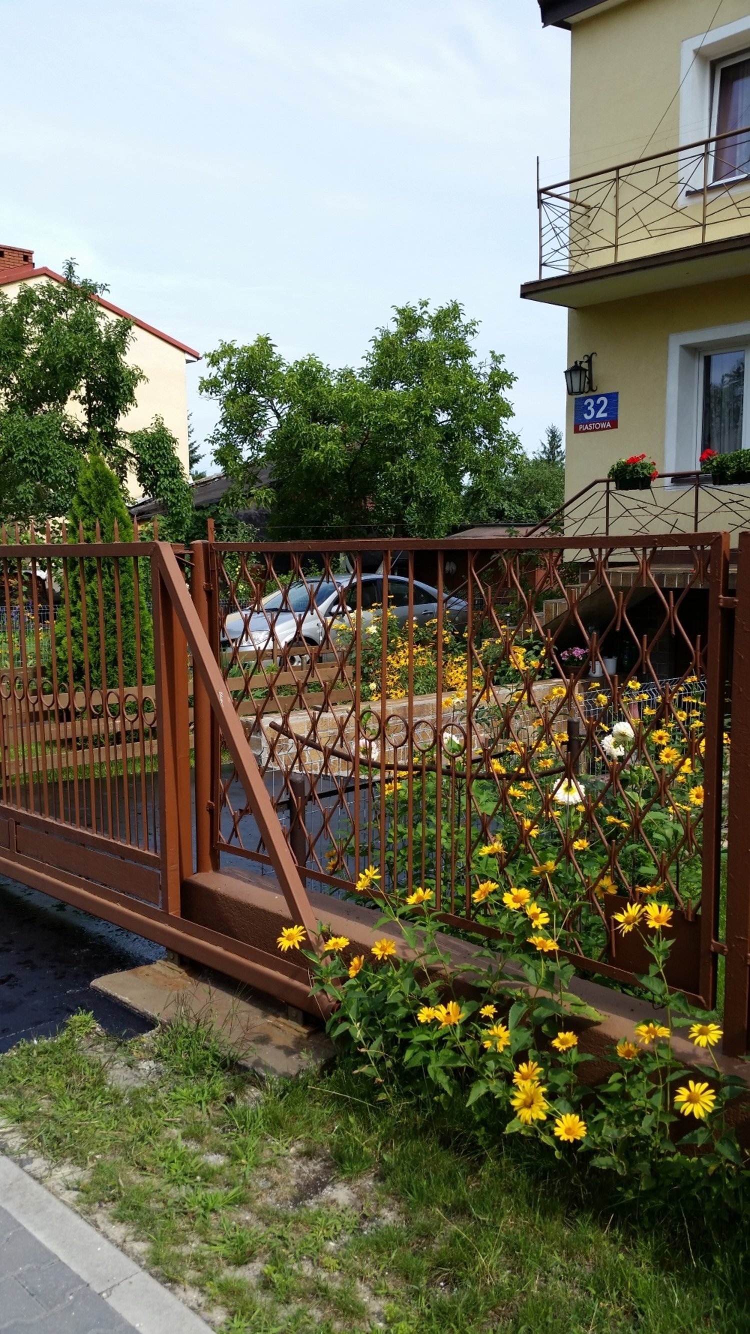 fences 3.jpg