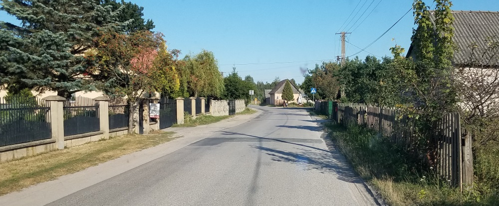 fences 6.jpg