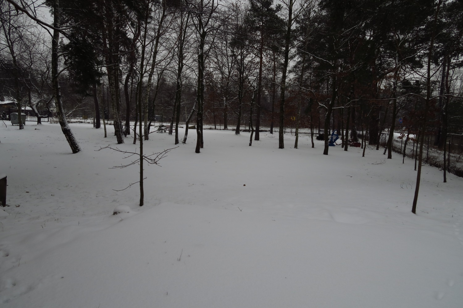 """Wed. morning update - It snowed all night and this is what we ended up with - about 2 - 2.5"""". Obviously it's not snowing very hard!"""