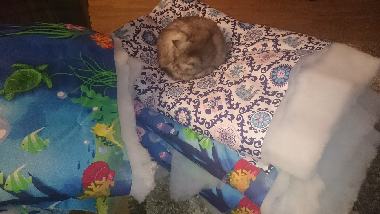 The cat sleeping on some sandwiched quilts