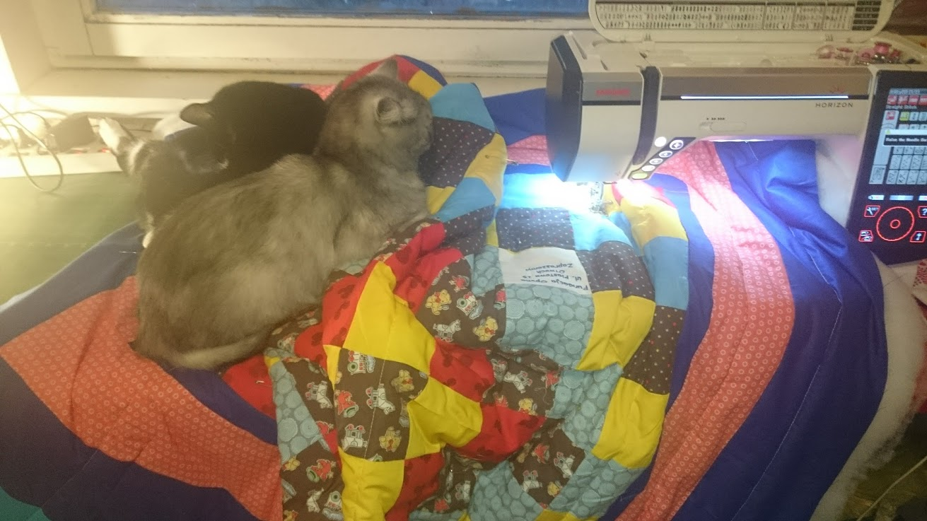 Quilting. My helpers make it harder