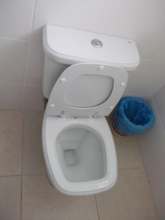 Petersen's toilette in Poland