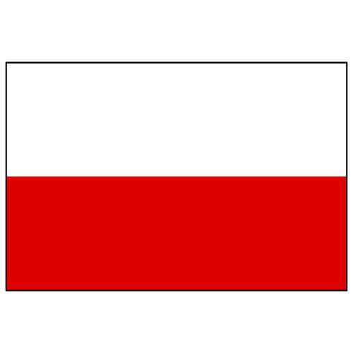 Polish flag on t shirt.jpg