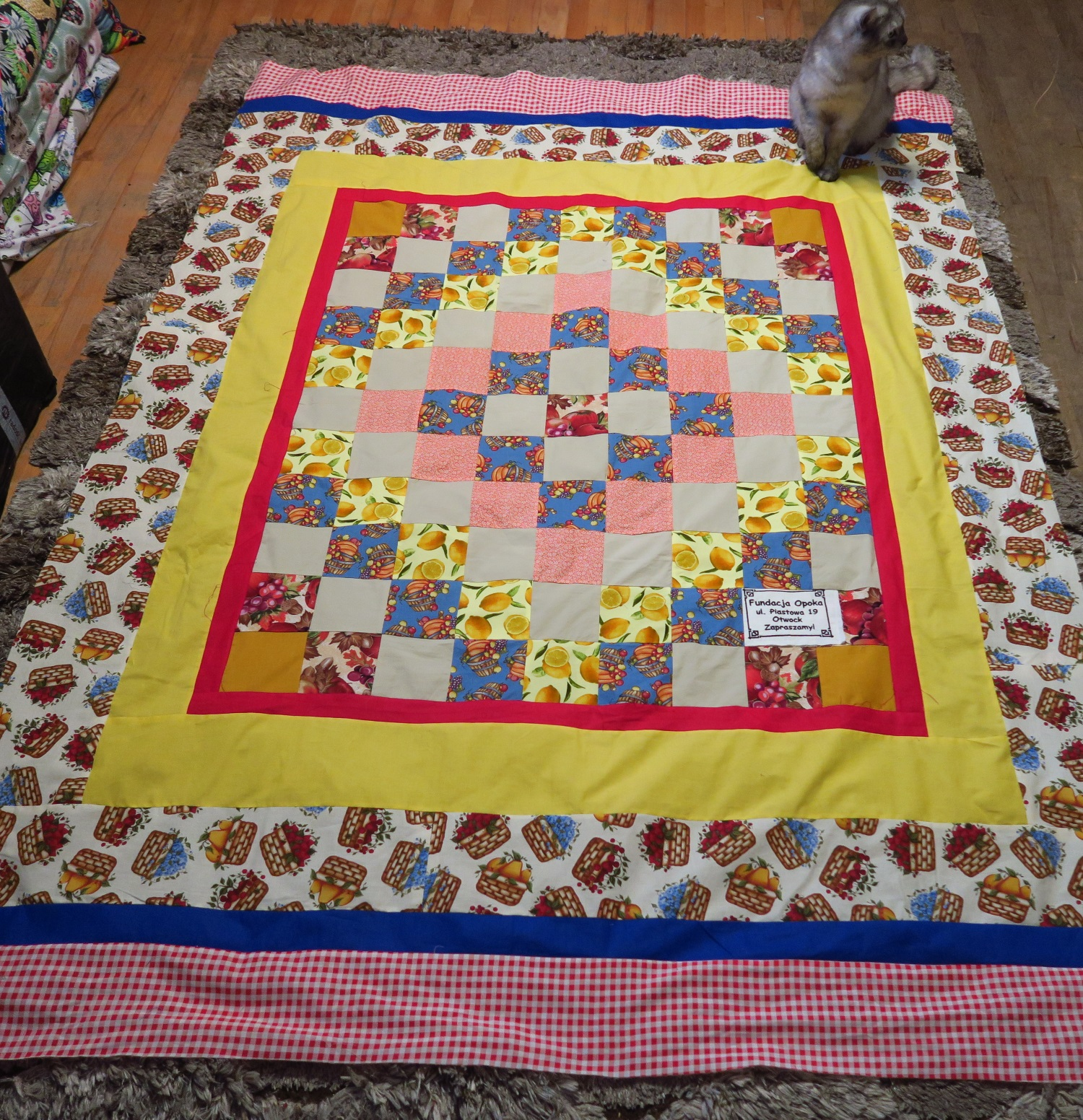 Fran made the center. I added the borders. The cat with the hurt paw is on it.  Yes, it's still not right. Gotta go back to the vet.