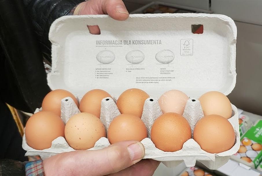 eggs cr.jpg