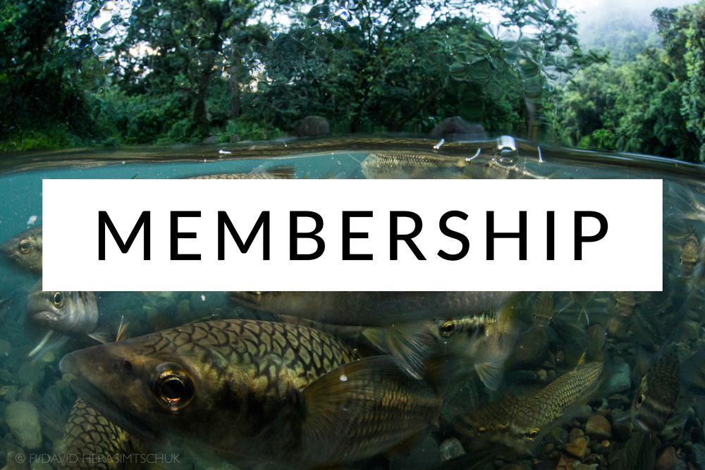 Freshwaters-Illustrated-Membership.jpg