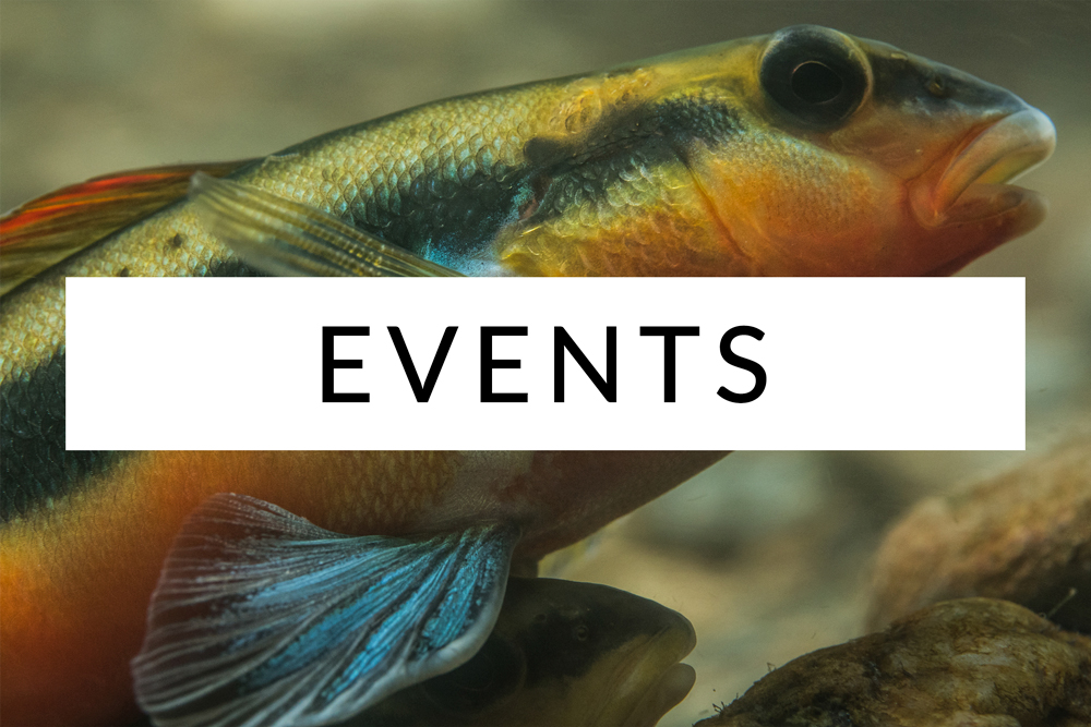 Freshwaters-Illustrated-Events.jpg