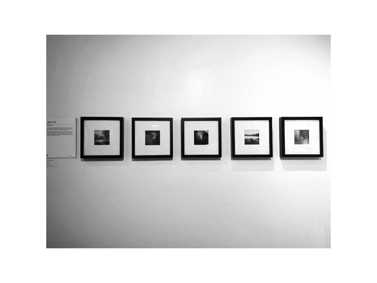 enclosed_gallery view_2.jpg