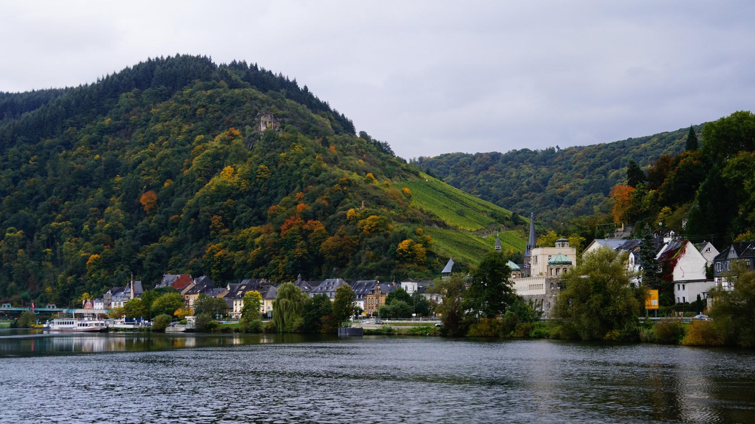 Blick auf die Grevenburg