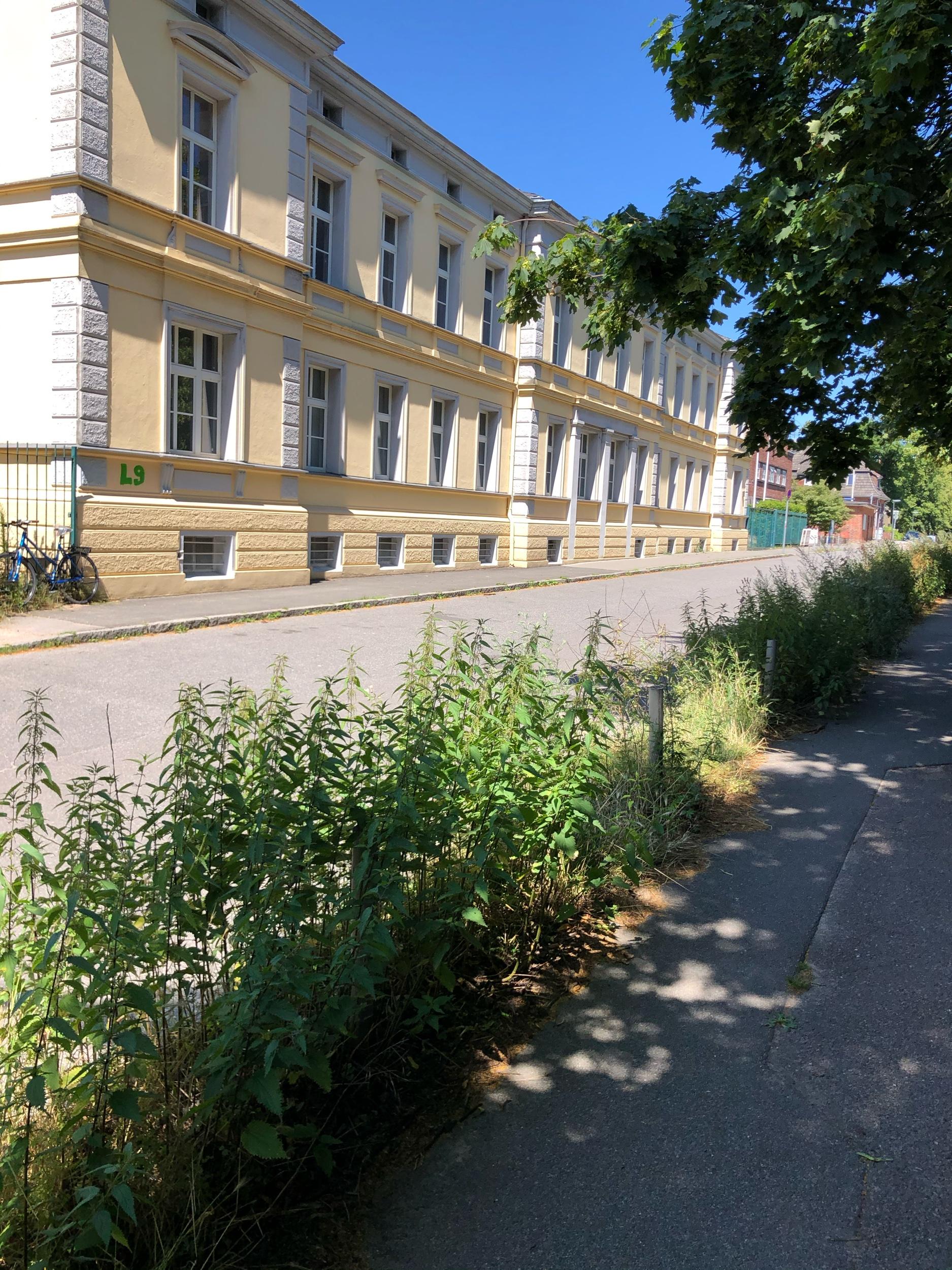 Es grünt in Friedrichsort