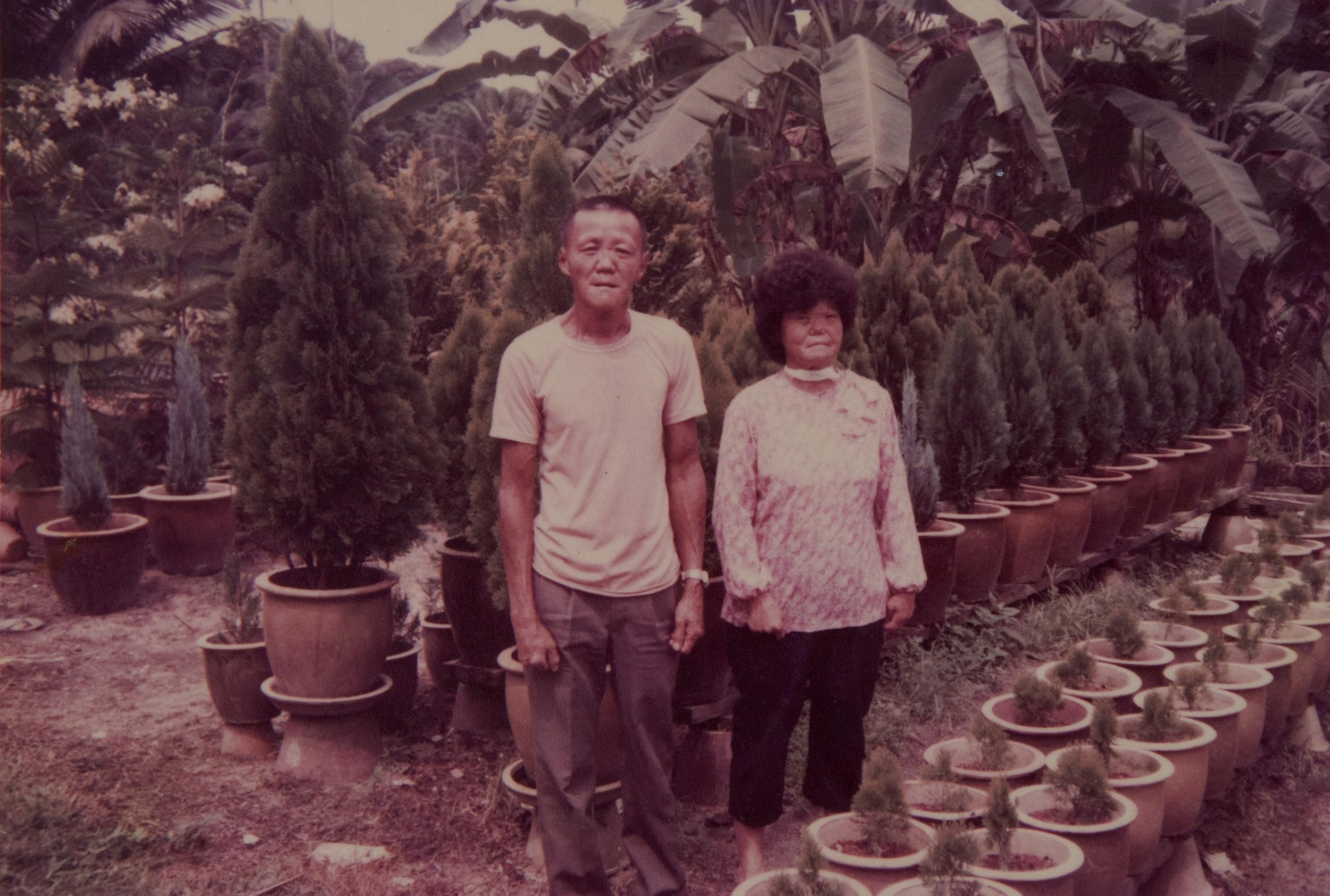 Heng and her husband used to run a nursery in the early years. (photo courtesy of Heng Pak Nang)