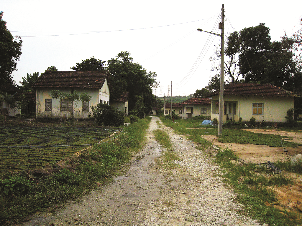 There were 248 chalets in the Central Section and 161 chalets in the East Section. (photo by Tan Ean Nee)