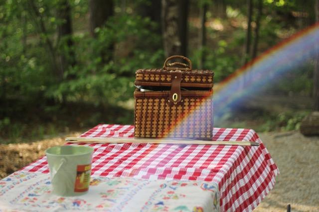 piknik_organizasyon