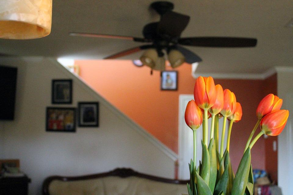 çiçek anlamları 7.jpg