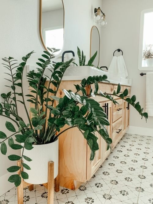 zamia-banyo-dekor