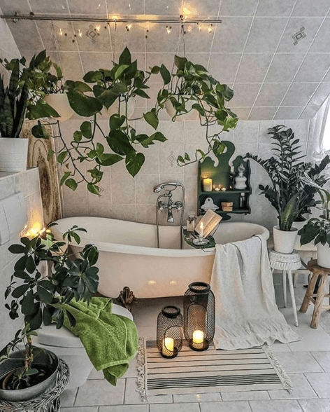 sarmaşıklar-banyoda-yetişecek-bitkiler