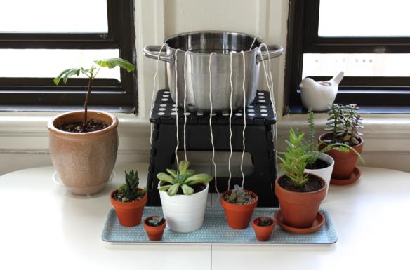 watering-plants-holiday-practice-watering-plants-rope-tape-watering
